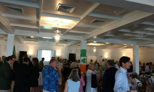 Guests and charity donors gather in a charity event.